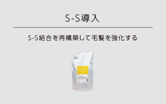 S-S導入