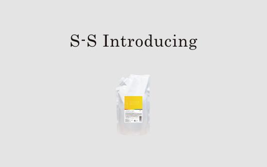 SS-導入